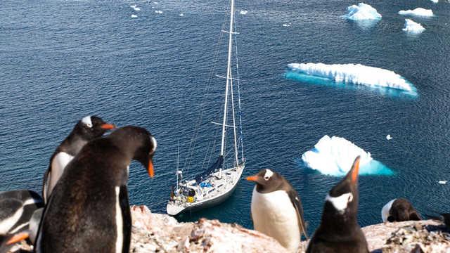 Croisière Antarctique à bord du voilier Esprit d'équipe