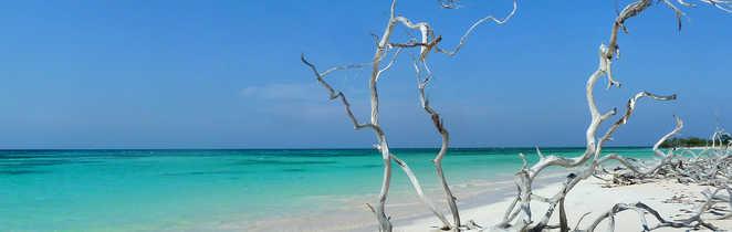 Cayo Jutias, une des plus belle plages du monde