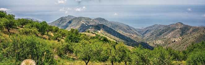 Collines andalouses lors d'une randonnée
