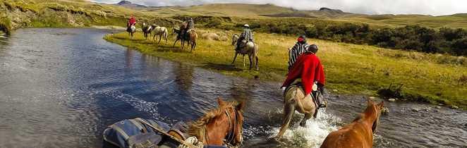 colonne de chevaux avec bat au Chimborazo