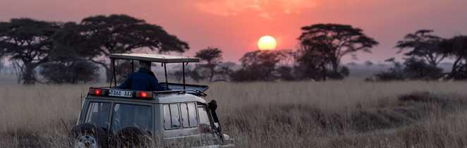 Coucher de soleil lors d'un safari
