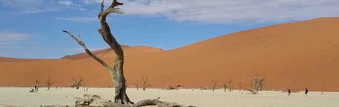 désert de sel