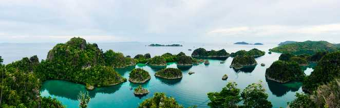 Décor unique des Raja Ampat : constellation d'îles vert tropical