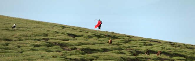 Drapée masai flottant dans les terres du rift