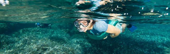 Juste sous la surface, une monde nouveau à découvrir