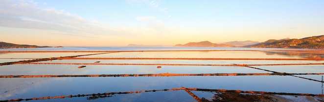 Marais salants de la presqu'île de Giens