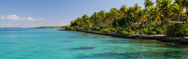 Paradis des Tuamotus