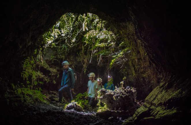 A l'entrée des tunnels de lave de la Réunion