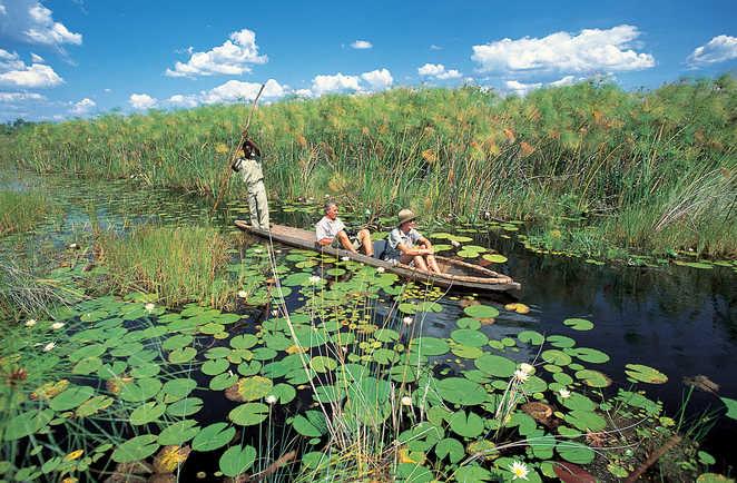 Balade en mokoro dans le delta de l'Okavango au Botswana