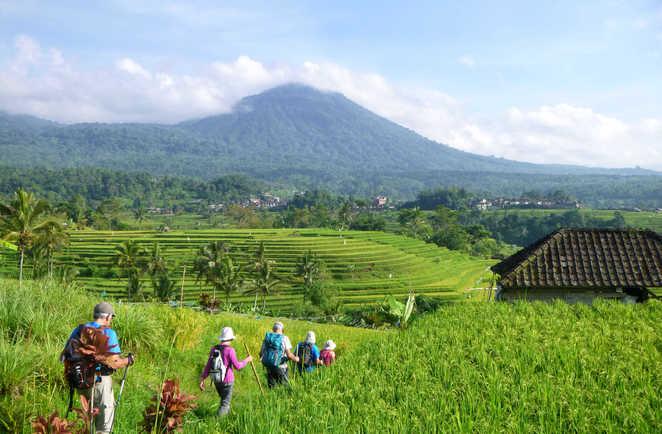 Balade sur la riziere de Jatiluwih