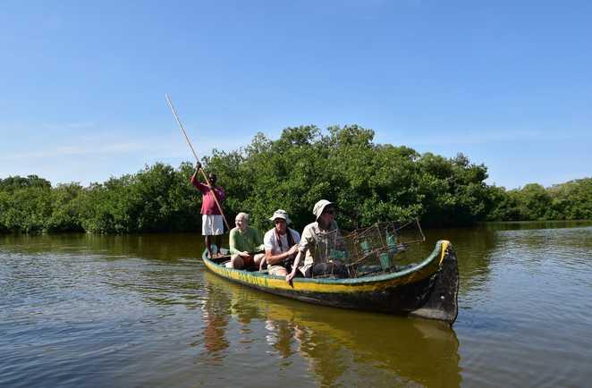 Canoë dans la mangrove de la Boquilla