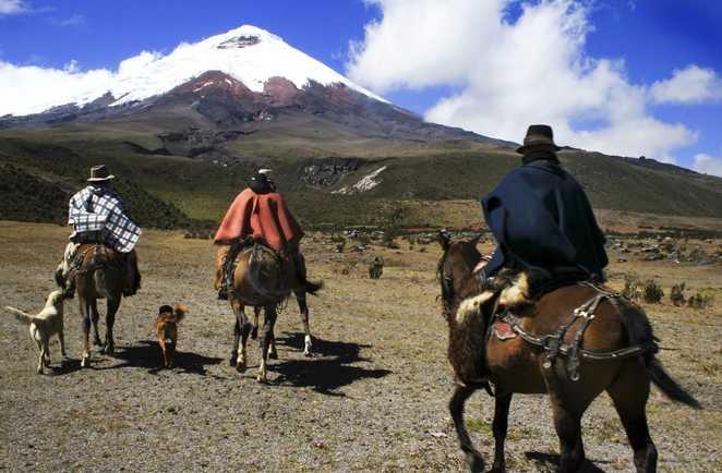 cavaliers au Chimborazo