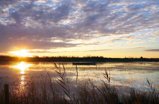Coucher de soleil sur les étangs du parc de Camargue