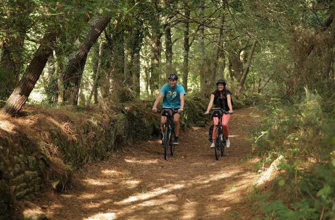 Cycliste dans le parc naturel régional de Brière