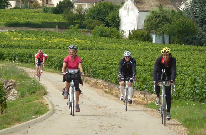 Groupe de cyclistes entre les vignes en bourgogne sud