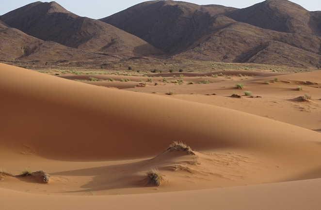 Dunes Ouzina, Zireg, Maroc