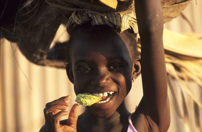 Enfant dans le parc du Sine Saloum au Sénégal