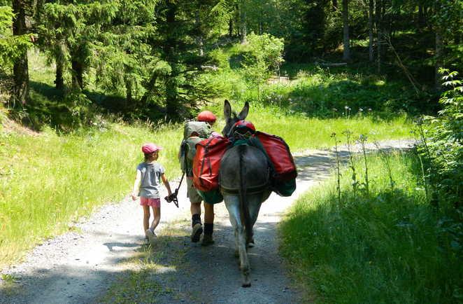 Enfant marchant en tenant un âne sur un chemin de randonnée