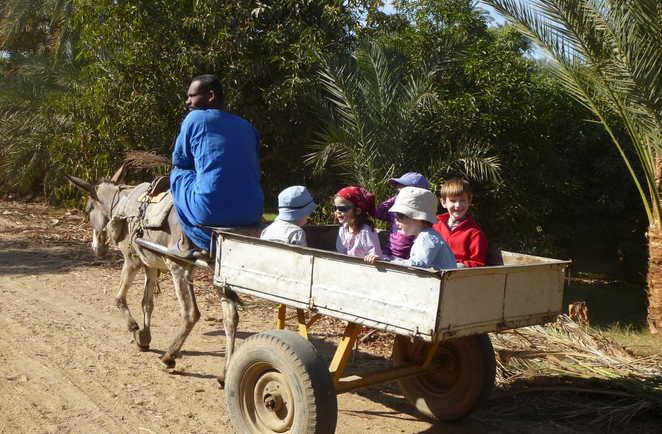 Enfants à bord d'une charrette dans une palmeraie en Egypte