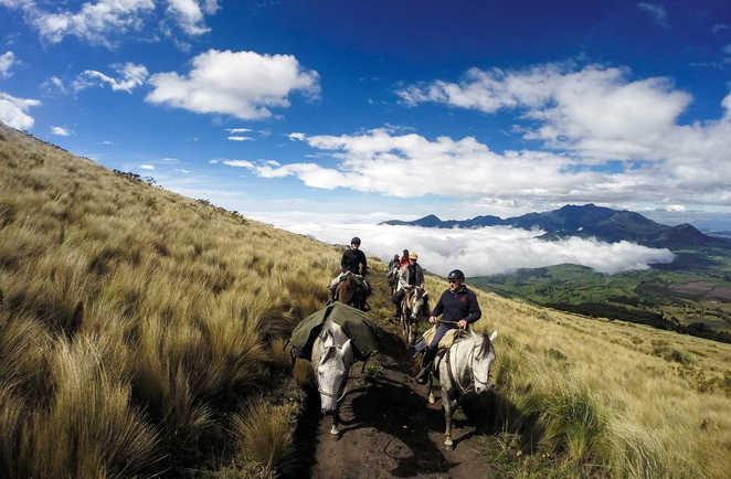 Equateur, cavaliers et chevaux de bâts