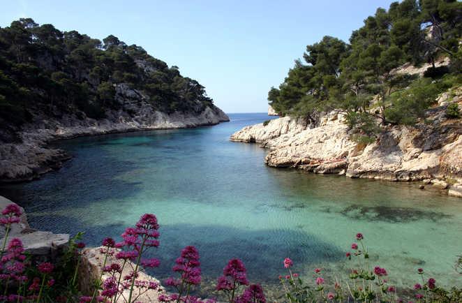 La calanque de Port Pin, Cassis, Provence