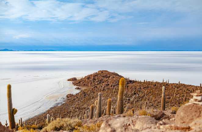 Le salar d'Uyuni depuis l'île Incahuasi