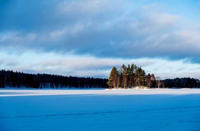 Lumière d'hiver en Laponie