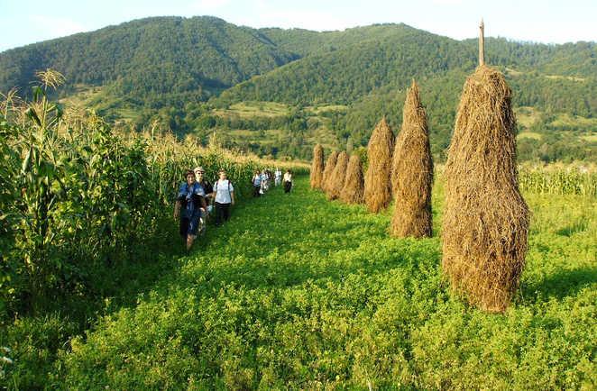 Maramures, randonnée dans les collines de la rivière Iza