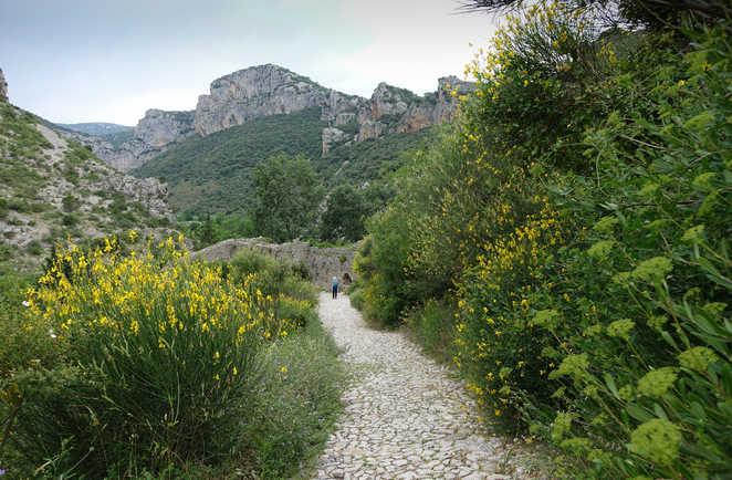 chemin de Saint Guilem 3