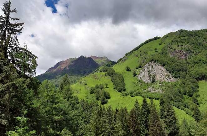 Paysage bucolique de la Vallée d'Aspe