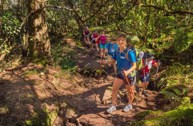 Randonnée dans la forêt de Bois de Couleur,  la Réunion