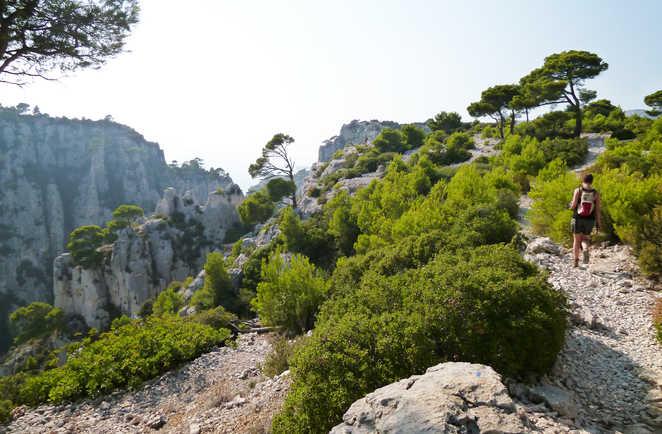 Randonnée sur les sentiers des calanques en Provence