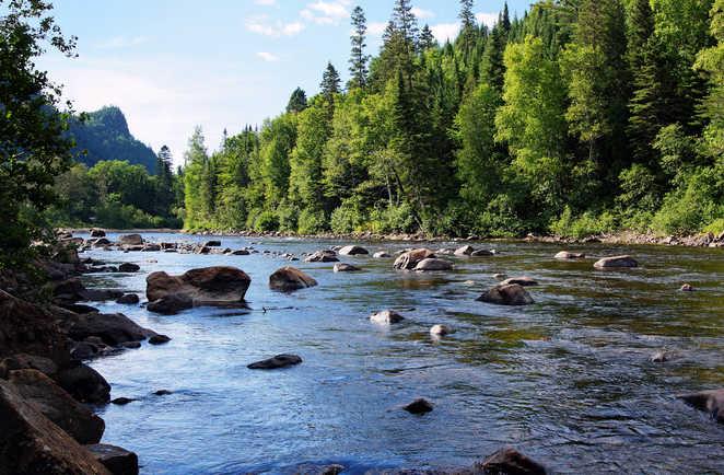 Rivière sauvage du Canada au Québec