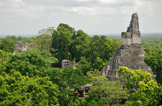 Temple du site maya de Tikal au Guatemala