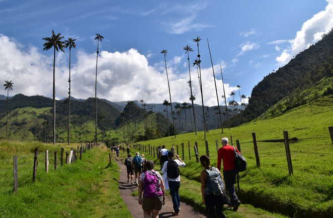 Randonneurs dans la vallée de Cocora