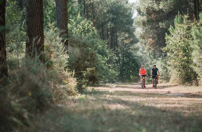 Vélo dans les Landes