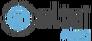 Logo agence locale Altaï Alpes