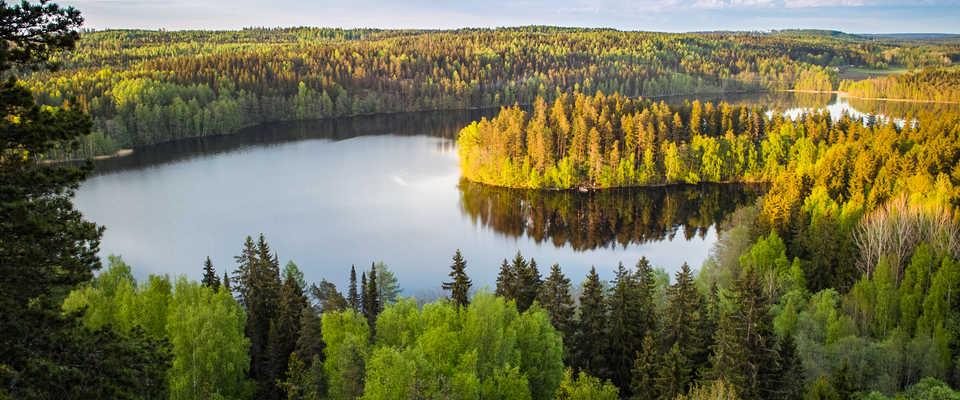 Paysage de Finlande l'automne